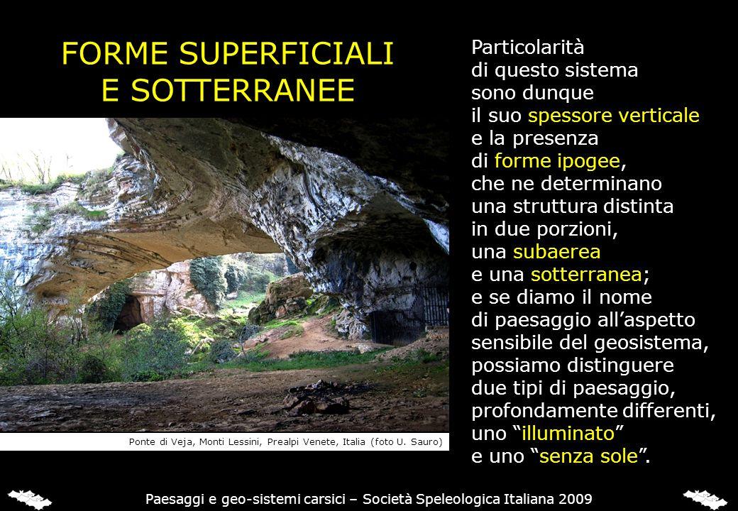 FORME SUPERFICIALI E SOTTERRANEE Particolarità di questo sistema sono dunque il suo spessore verticale e la presenza di forme ipogee, che ne determina