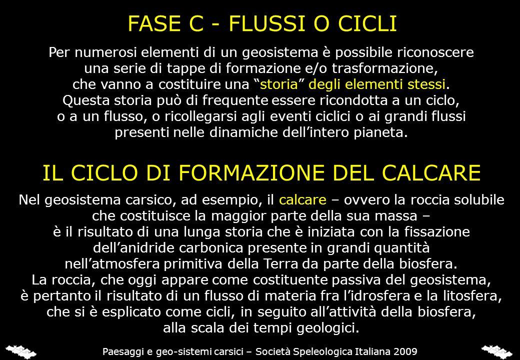 FASE C - FLUSSI O CICLI Per numerosi elementi di un geosistema è possibile riconoscere una serie di tappe di formazione e/o trasformazione, che vanno