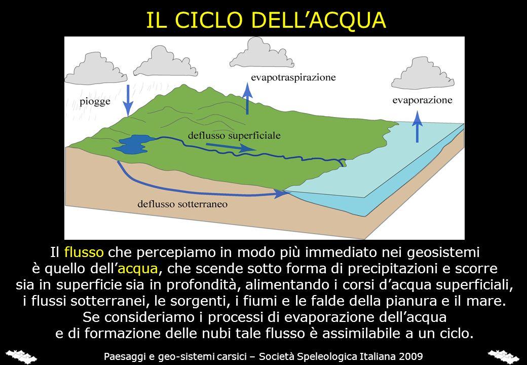 IL CICLO DELLACQUA Il flusso che percepiamo in modo più immediato nei geosistemi è quello dellacqua, che scende sotto forma di precipitazioni e scorre