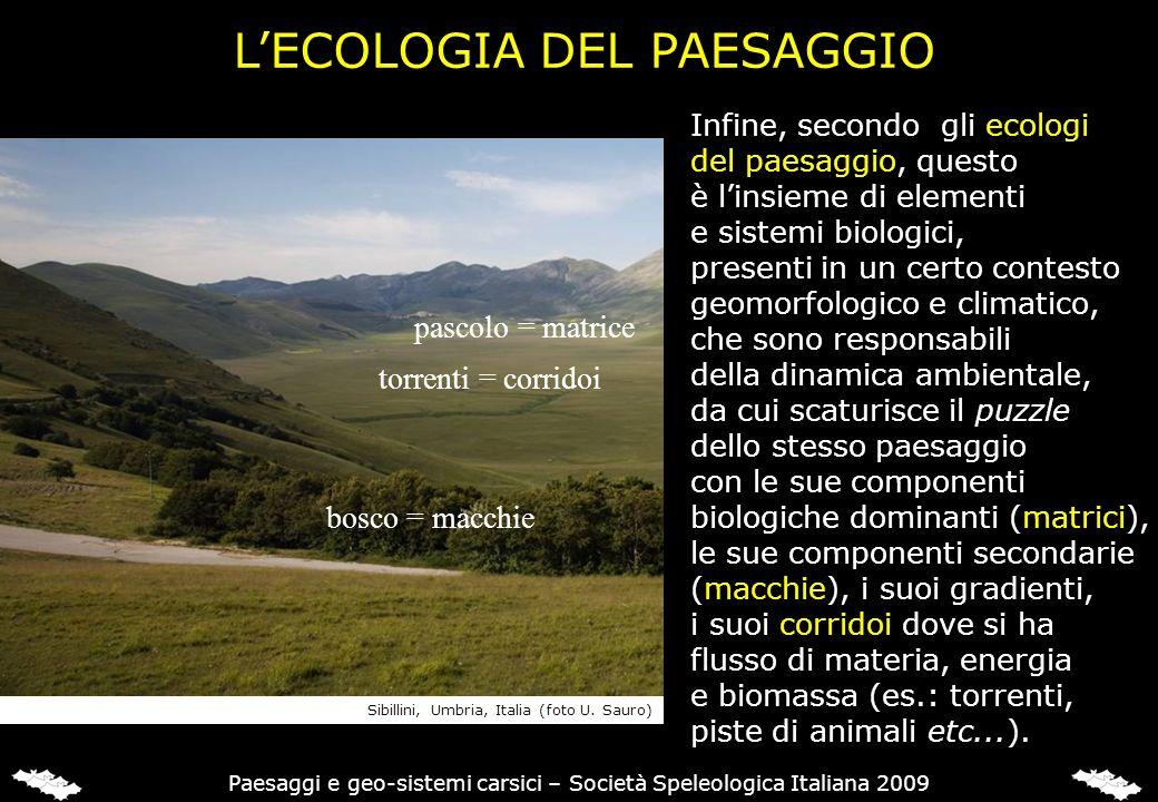 LECOLOGIA DEL PAESAGGIO Infine, secondo gli ecologi del paesaggio, questo è linsieme di elementi e sistemi biologici, presenti in un certo contesto ge