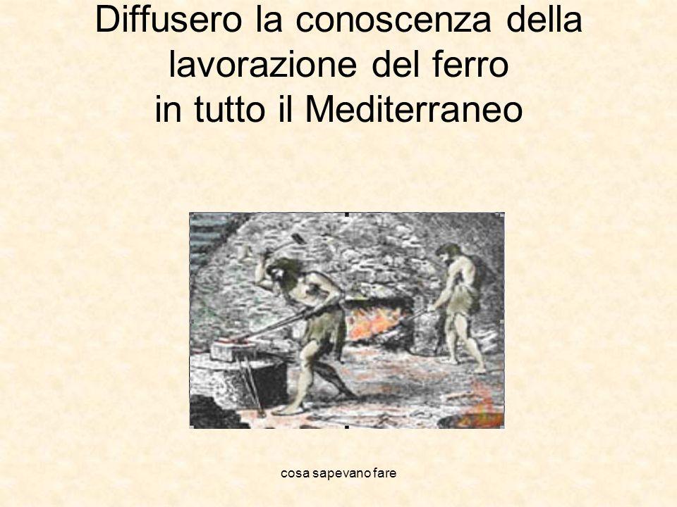 cosa sapevano fare Diffusero la conoscenza della lavorazione del ferro in tutto il Mediterraneo