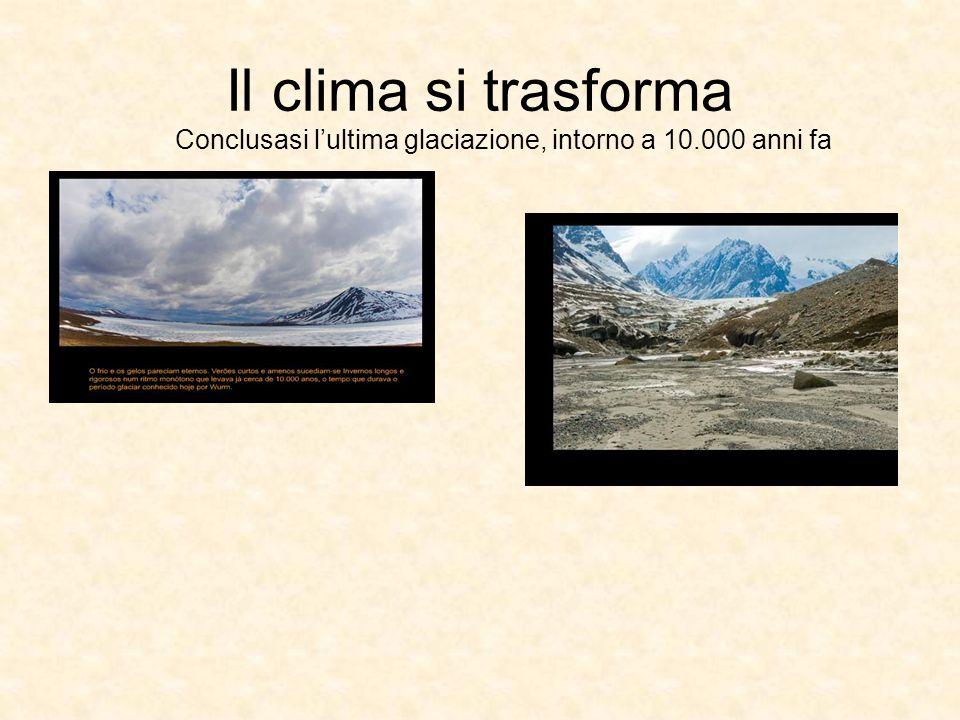 Conclusasi lultima glaciazione, intorno a 10.000 anni fa Il clima si trasforma