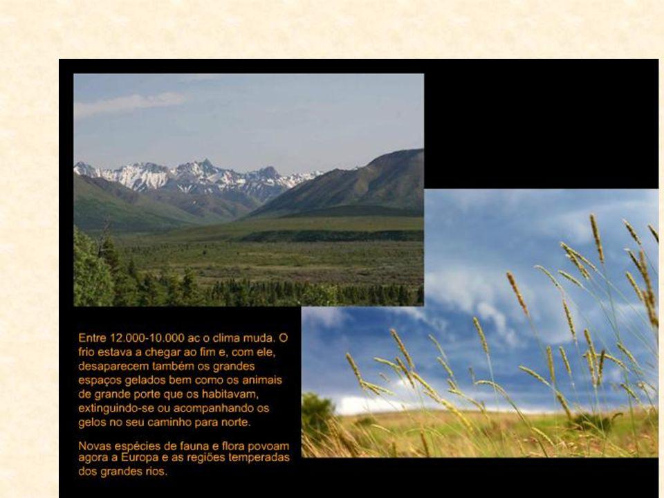 Molti dei grandi mammiferi del Pleistocene si estinsero, lasciando il posto alle specie attuali.