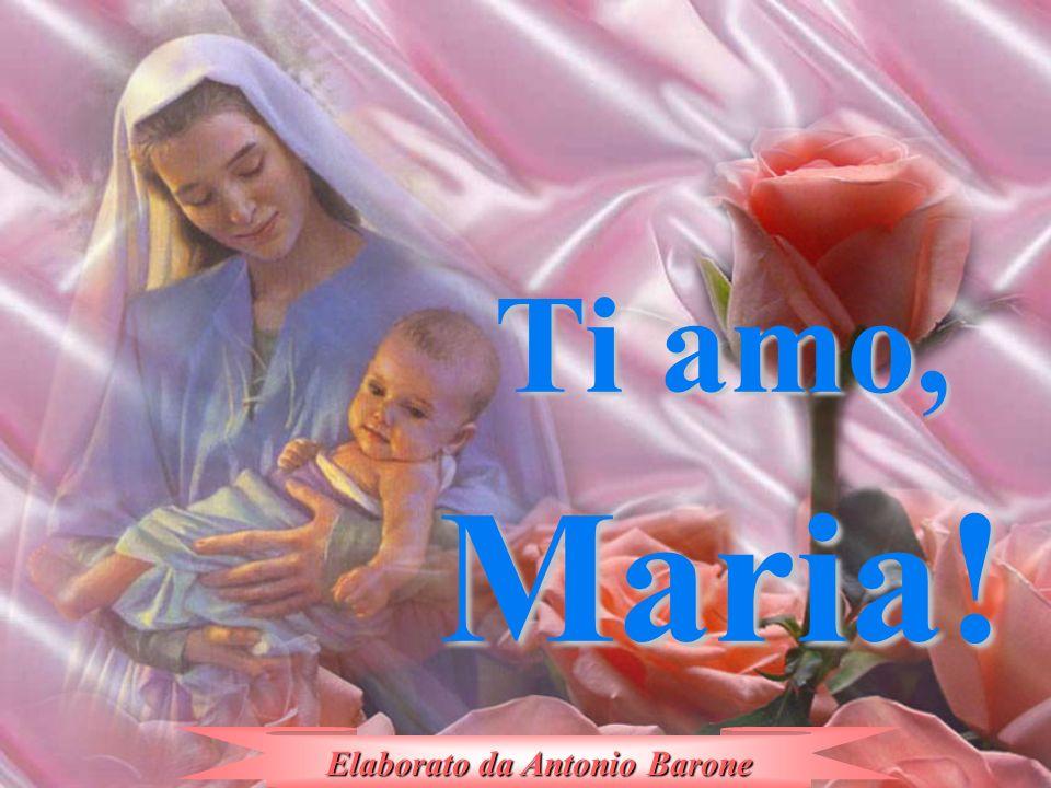 O Madre mia dolcissima, voglio amarti con cuore di figlio, a te affido la mia vita. Ti prego: a te affido la mia vita. Ti prego: guidami tu sulla via