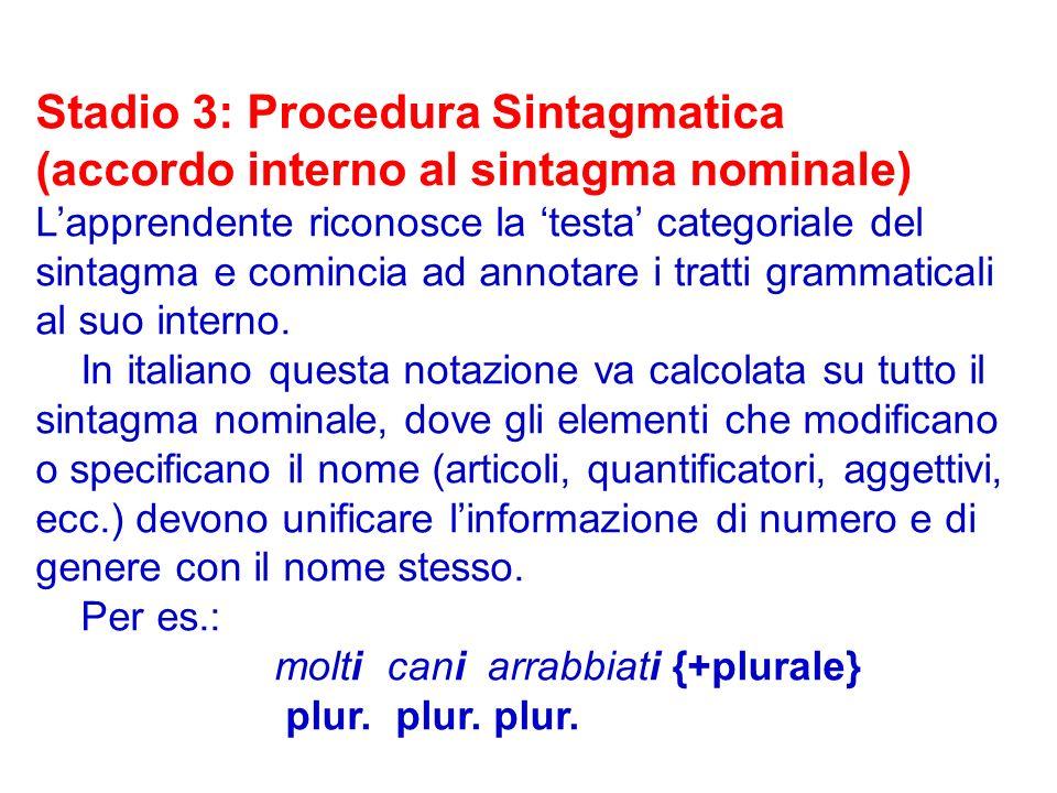 Stadio 3: Procedura Sintagmatica (accordo interno al sintagma nominale) Lapprendente riconosce la testa categoriale del sintagma e comincia ad annotar