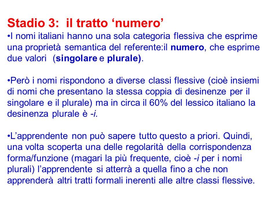 Stadio 3: il tratto numero I nomi italiani hanno una sola categoria flessiva che esprime una proprietà semantica del referente:il numero, che esprime