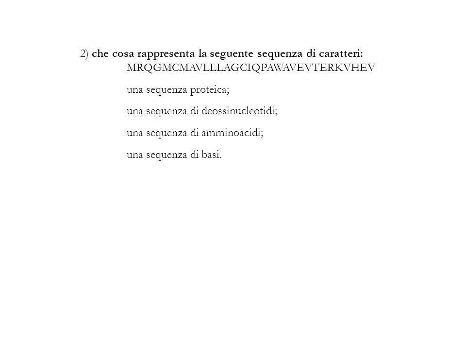 2) che cosa rappresenta la seguente sequenza di caratteri: MRQGMCMAVLLLAGCIQPAWAVEVTERKVHEV una sequenza proteica; una sequenza di deossinucleotidi; u