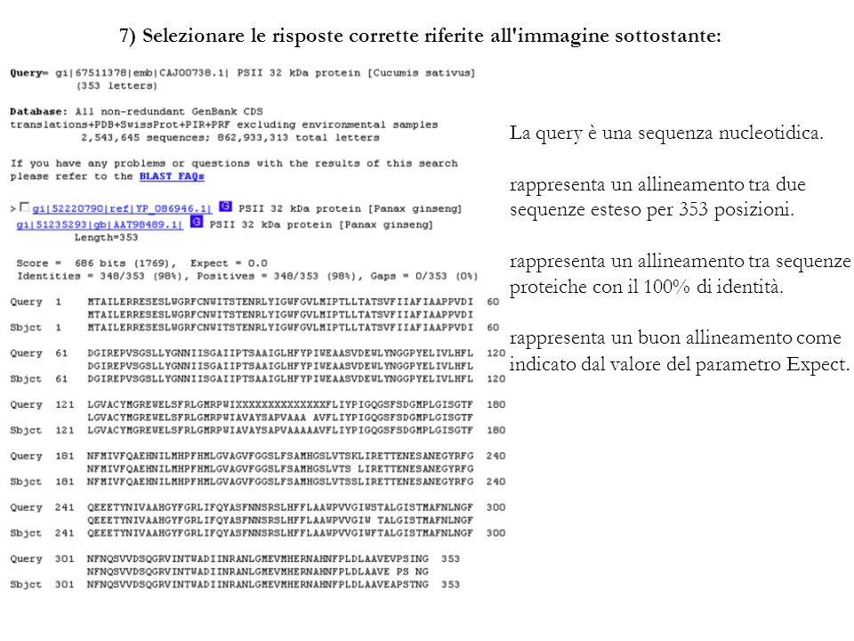 7) Selezionare le risposte corrette riferite all'immagine sottostante: La query è una sequenza nucleotidica. rappresenta un allineamento tra due seque