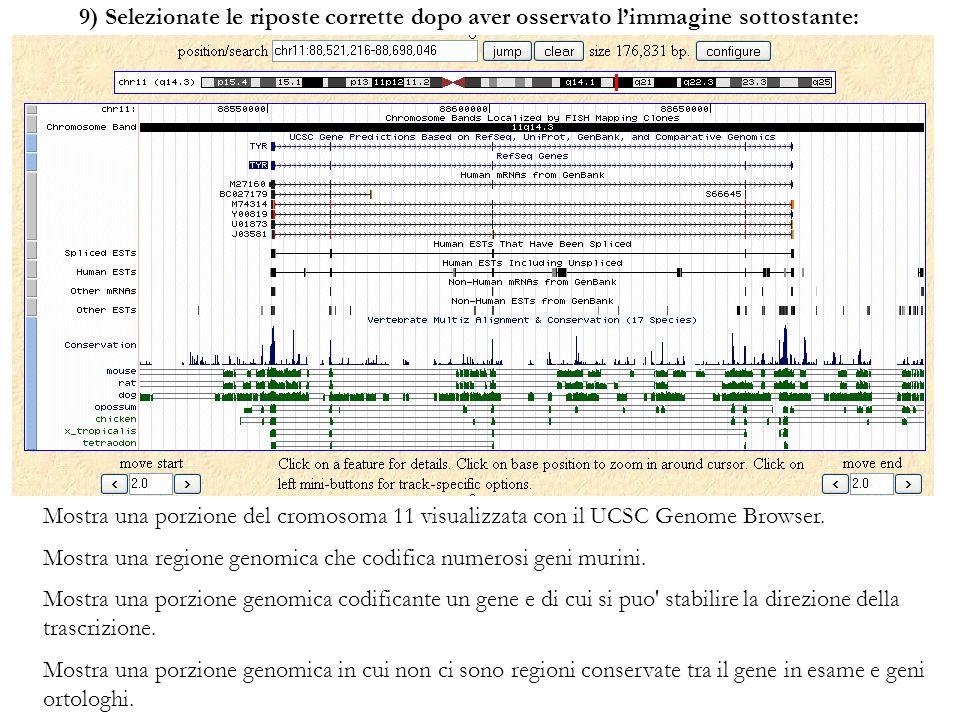 9) Selezionate le riposte corrette dopo aver osservato limmagine sottostante: Mostra una porzione del cromosoma 11 visualizzata con il UCSC Genome Bro