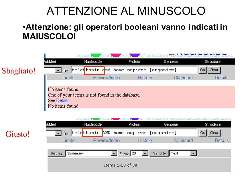 ATTENZIONE AL MINUSCOLO Attenzione: gli operatori booleani vanno indicati in MAIUSCOLO.