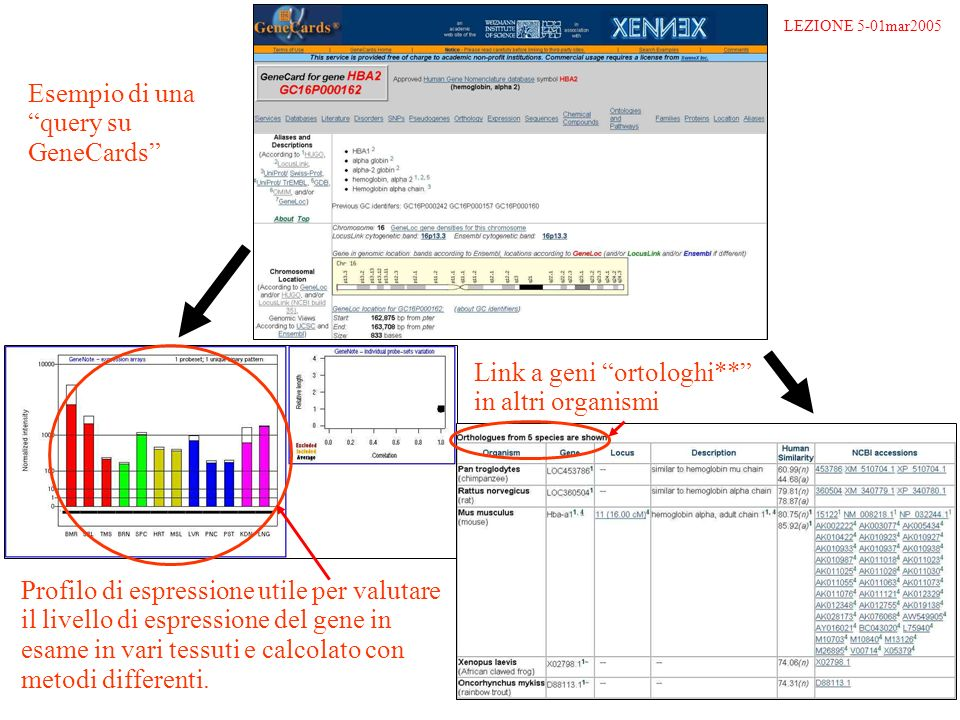 Esempio di una query su GeneCards Profilo di espressione utile per valutare il livello di espressione del gene in esame in vari tessuti e calcolato con metodi differenti.