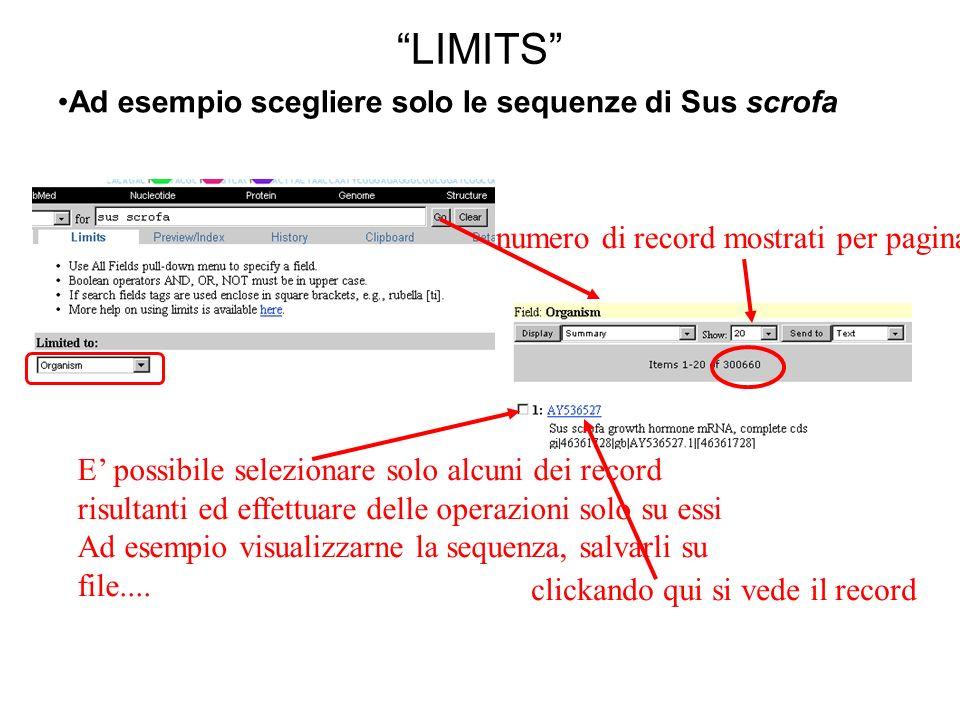 LIMITS Ad esempio scegliere solo le sequenze di Sus scrofa E possibile selezionare solo alcuni dei record risultanti ed effettuare delle operazioni solo su essi Ad esempio visualizzarne la sequenza, salvarli su file....