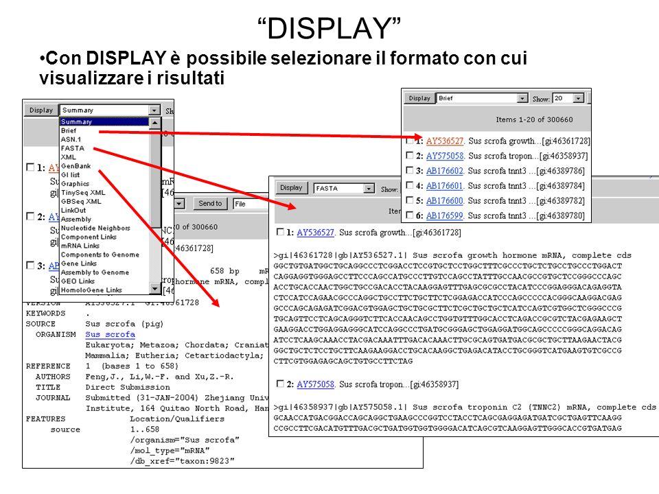 DISPLAY Con DISPLAY è possibile selezionare il formato con cui visualizzare i risultati
