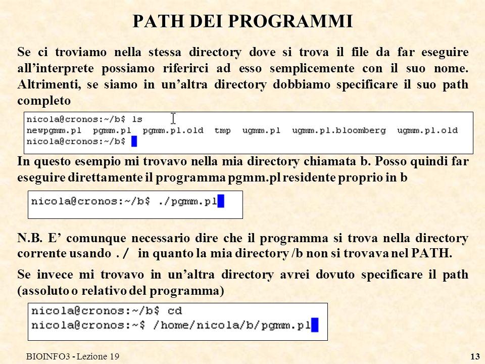 BIOINFO3 - Lezione 1913 Se ci troviamo nella stessa directory dove si trova il file da far eseguire allinterprete possiamo riferirci ad esso semplicem
