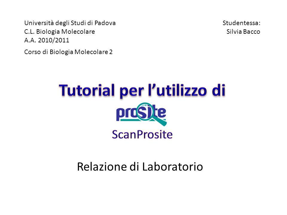 Università degli Studi di Padova C.L. Biologia Molecolare A.A. 2010/2011 Corso di Biologia Molecolare 2 Studentessa: Silvia Bacco Relazione di Laborat