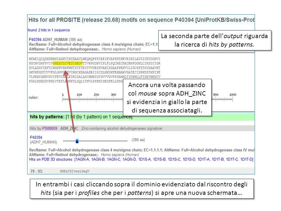 La seconda parte delloutput riguarda la ricerca di hits by patterns. Ancora una volta passando col mouse sopra ADH_ZINC si evidenzia in giallo la part
