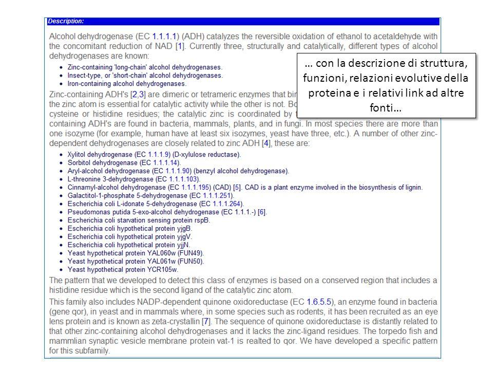 … con la descrizione di struttura, funzioni, relazioni evolutive della proteina e i relativi link ad altre fonti…