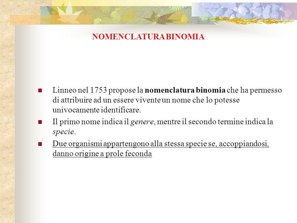 Linneo nel 1753 propose la nomenclatura binomia che ha permesso di attribuire ad un essere vivente un nome che lo potesse univocamente identificare. I