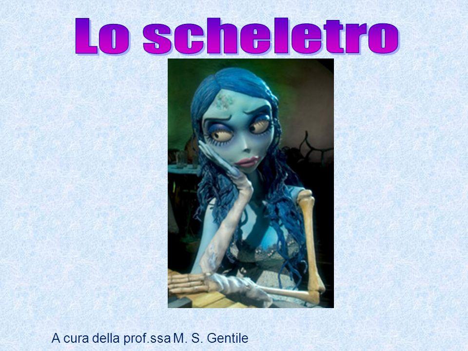 A cura della prof.ssa M. S. Gentile