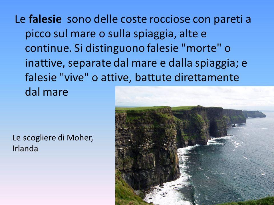 Le falesie sono delle coste rocciose con pareti a picco sul mare o sulla spiaggia, alte e continue. Si distinguono falesie