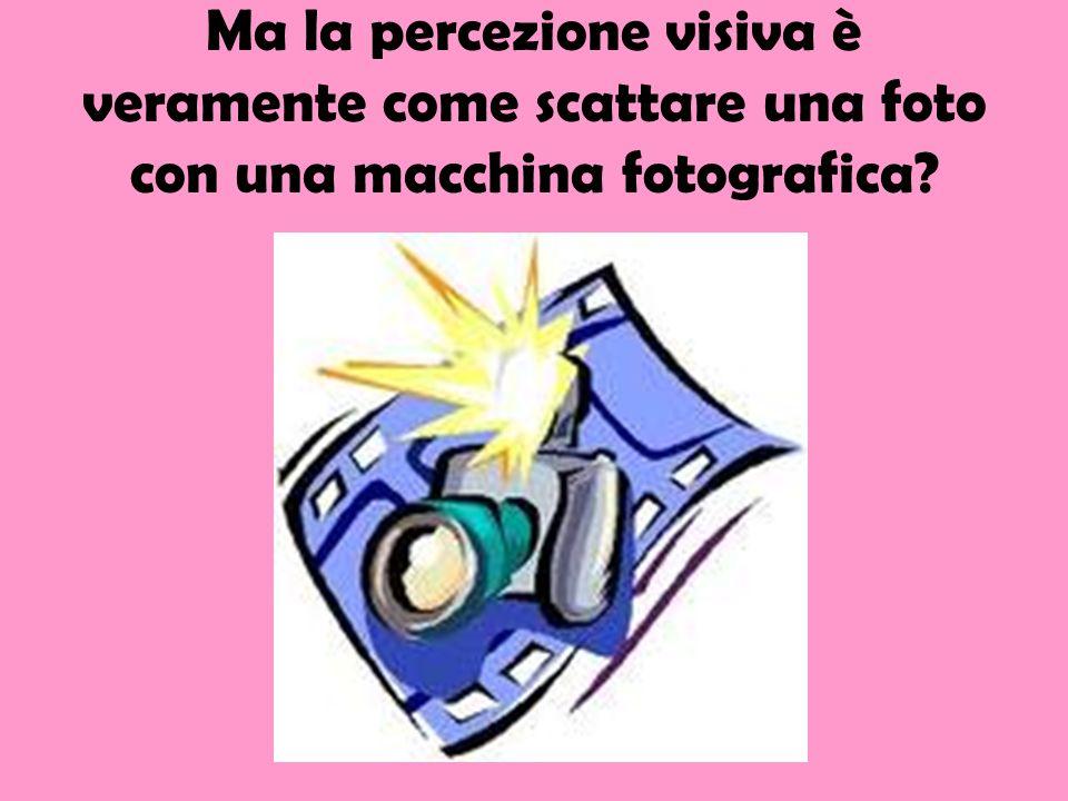 Ma la percezione visiva è veramente come scattare una foto con una macchina fotografica?