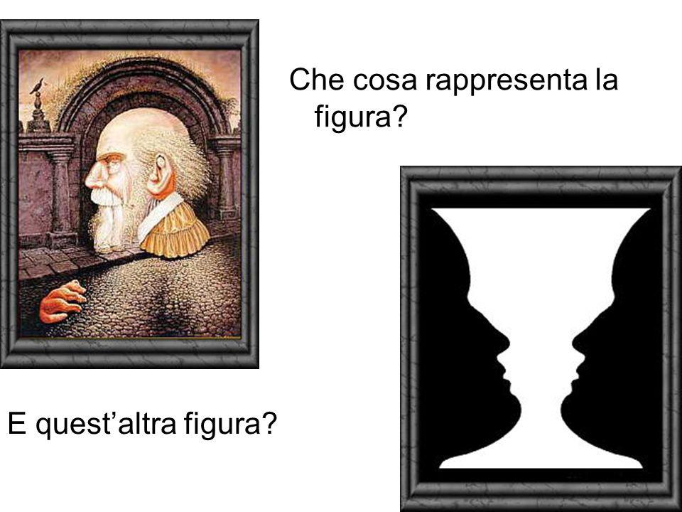 Che cosa rappresenta la figura? E questaltra figura?