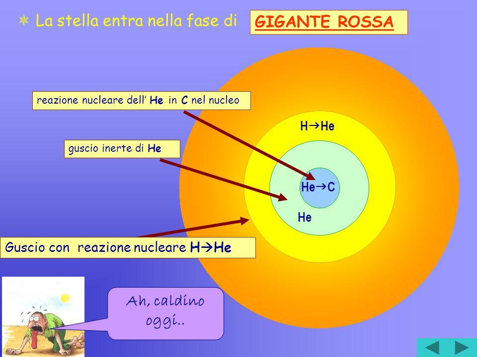 H He He He C reazione nucleare dell He in C nel nucleoguscio inerte di He Guscio con reazione nucleare H He La stella entra nella fase di GIGANTE ROSSA Ah, caldino oggi..
