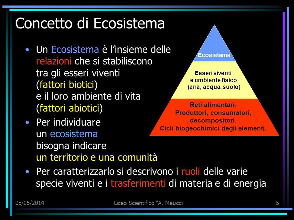 05/05/2014Liceo Scientifico A. Meucci5 Concetto di Ecosistema Un Ecosistema è linsieme delle relazioni che si stabiliscono tra gli esseri viventi (fat