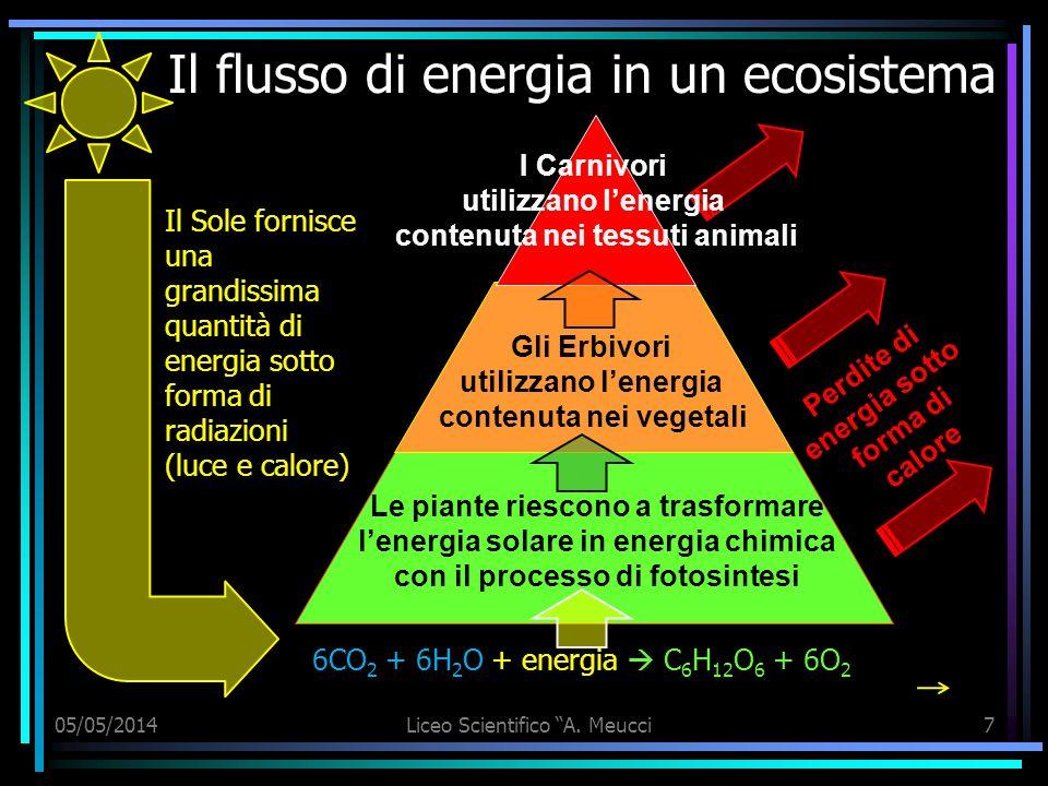 Il flusso di energia in un ecosistema Il Sole fornisce una grandissima quantità di energia sotto forma di radiazioni (luce e calore) 05/05/2014Liceo S