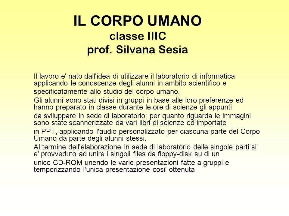 IL CORPO UMANO IL CORPO UMANO classe IIIC prof. Silvana Sesia Il lavoro e' nato dall'idea di utilizzare il laboratorio di informatica applicando le co