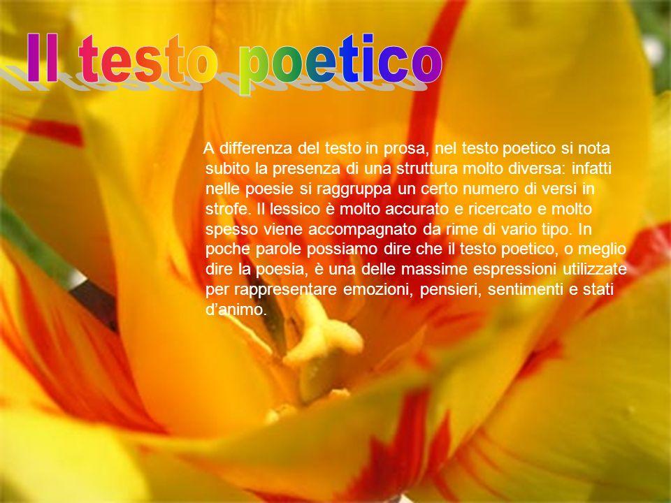 A differenza del testo in prosa, nel testo poetico si nota subito la presenza di una struttura molto diversa: infatti nelle poesie si raggruppa un cer