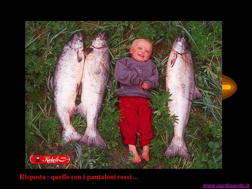 Risposta : quello con i pantaloni rossi... www.nardonardo.it