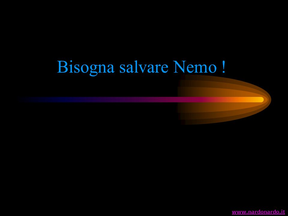 Bisogna salvare Nemo ! www.nardonardo.it