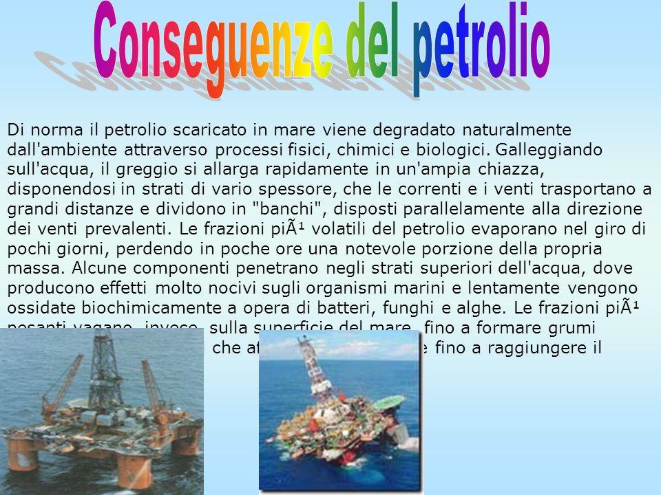 Il pericolo maggiore è rappresentato dagli incidenti che non di rado interessano le superpetroliere. Nel 1978 la petroliera Amoco Cadiz riversò in mar