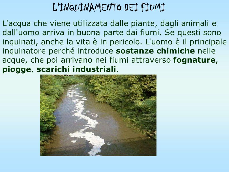 Queste sostanze tossiche finiscono nel sottosuolo o nei fiumi e giungono, attraverso la catena alimentare, fino all'uomo. L'inquinamento domestico è q