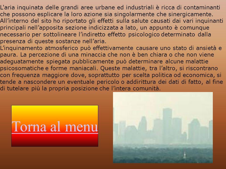 Linquinamento atmosferico comporta spesso numerose conseguenze a carico della salute, soprattutto nei casi in cui si verifichi un brusco innalzamento