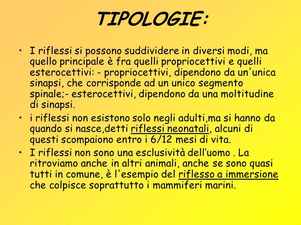TIPOLOGIE: I riflessi si possono suddividere in diversi modi, ma quello principale è fra quelli propriocettivi e quelli esterocettivi: - propriocettiv