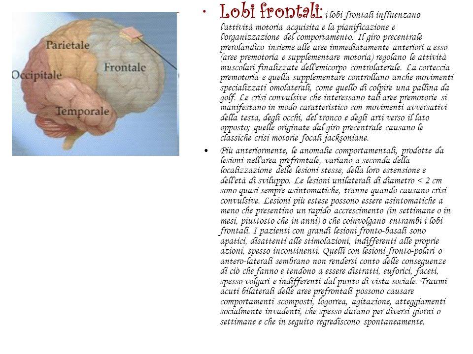 Lobi parietali : l area postrolandica dei lobi parietali integra gli stimoli somestesici per il riconoscimento e il ricordo di forme, strutture e pesi.