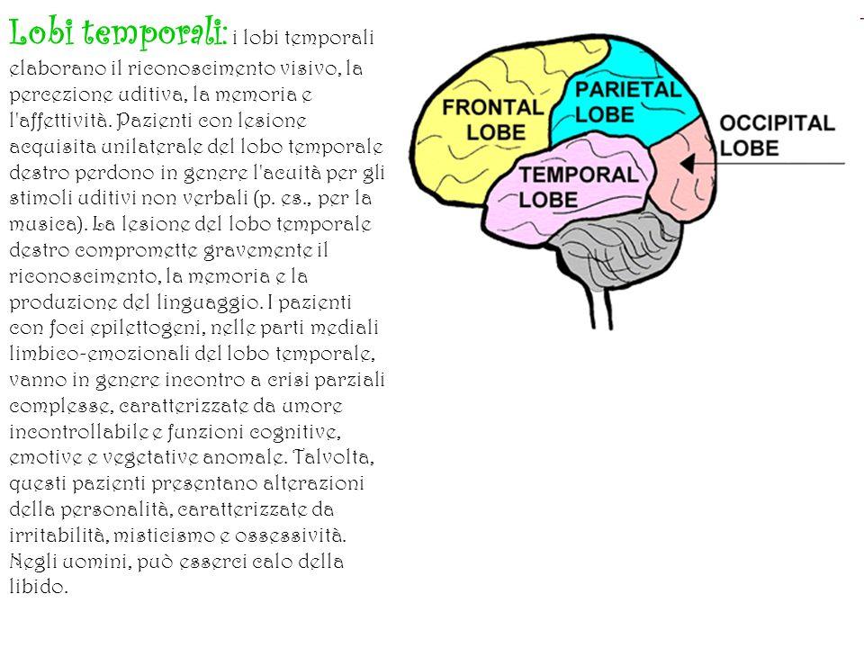 IL MANCINISMO N ella prima infanzia, nel cervello umano avviene una specializzazione funzionale dei due emisferi cerebrali.
