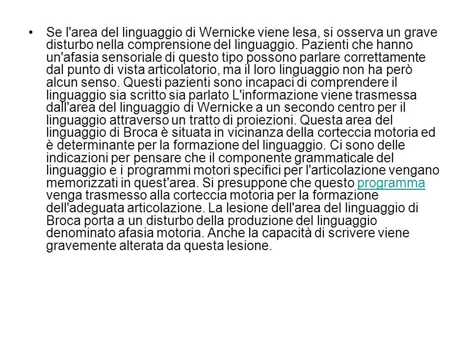 Se l'area del linguaggio di Wernicke viene lesa, si osserva un grave disturbo nella comprensione del linguaggio. Pazienti che hanno un'afasia sensoria