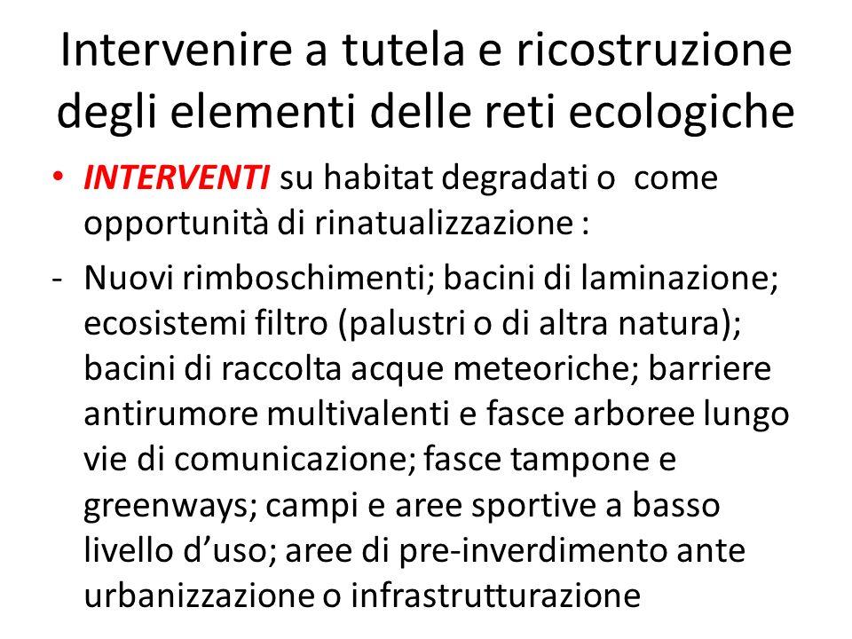 Intervenire a tutela e ricostruzione degli elementi delle reti ecologiche INTERVENTI su habitat degradati o come opportunità di rinatualizzazione : -N