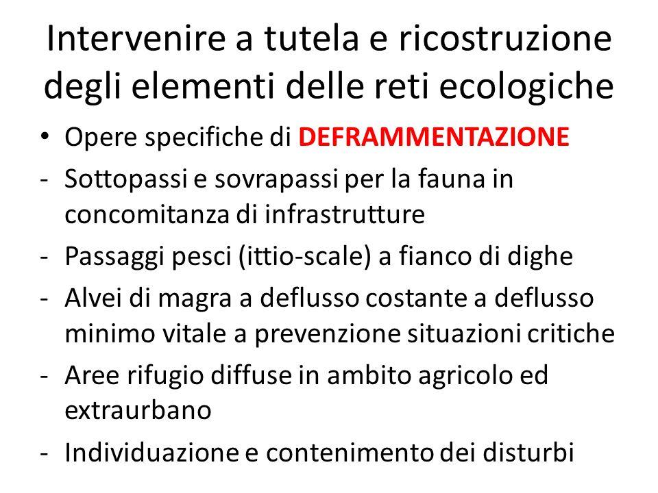 Intervenire a tutela e ricostruzione degli elementi delle reti ecologiche Opere specifiche di DEFRAMMENTAZIONE -Sottopassi e sovrapassi per la fauna i