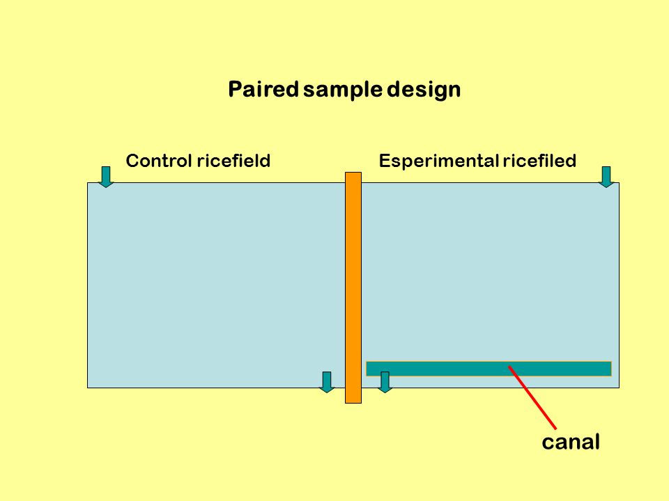 Control ricefieldEsperimental ricefiled Paired sample design canal