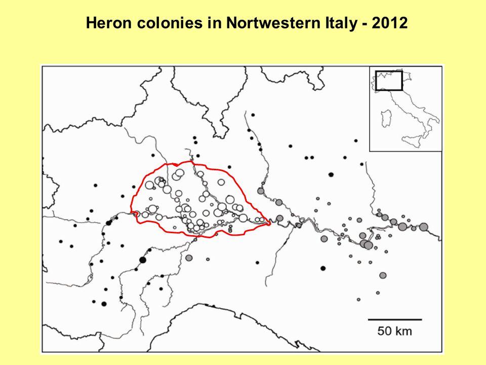 Heron colonies in Nortwestern Italy - 2012