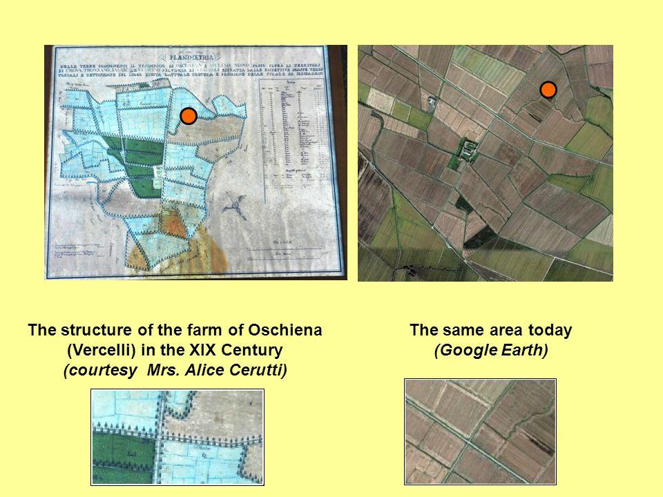 The structure of the farm of Oschiena (Vercelli) in the XIX Century (courtesy Mrs. Alice Cerutti) The same area today (Google Earth)