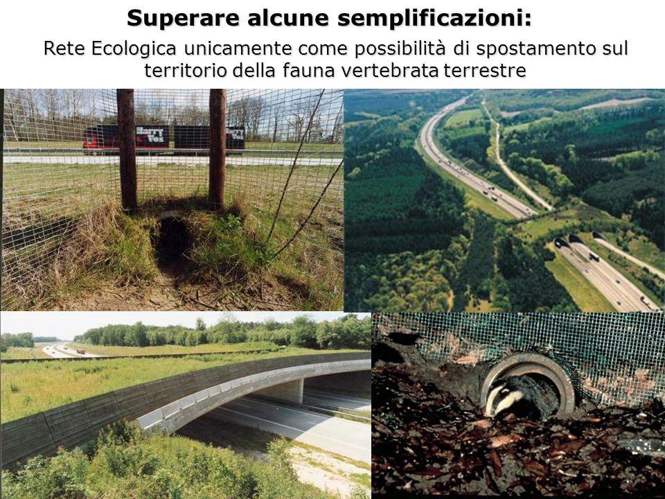 Superare alcune semplificazioni: Rete Ecologica unicamente come possibilità di spostamento sul territorio della fauna vertebrata terrestre