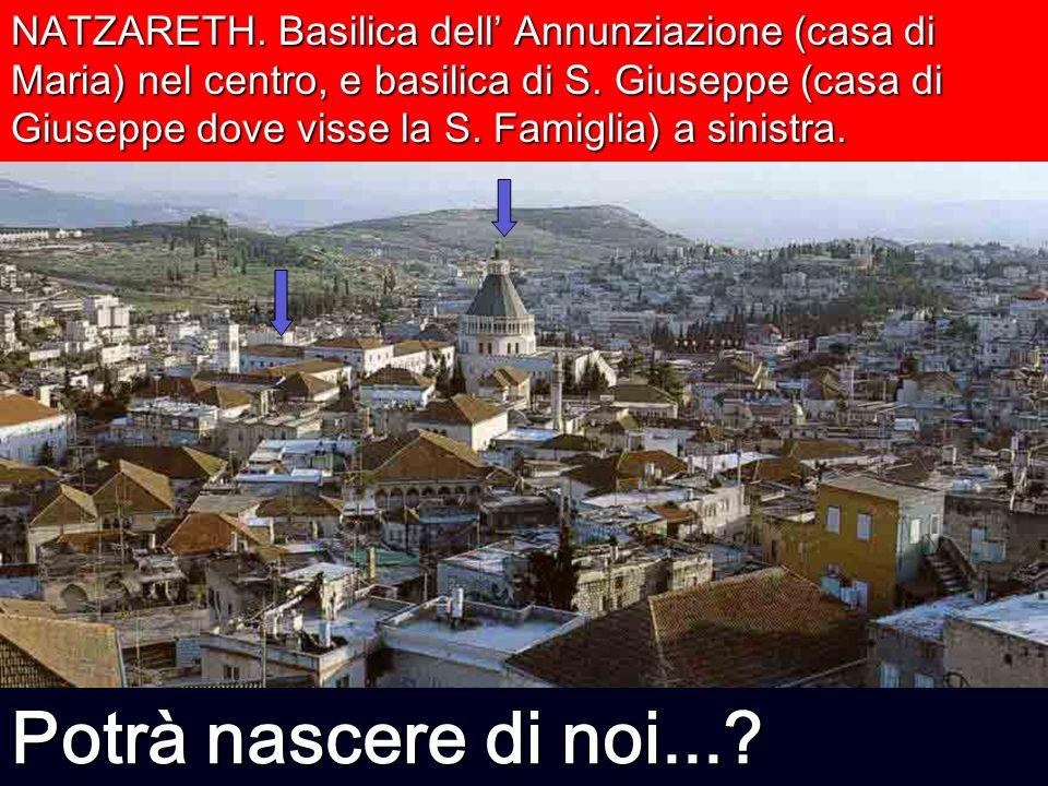 NATZARETH. Basilica dell Annunziazione (casa di Maria) nel centro, e basilica di S. Giuseppe (casa di Giuseppe dove visse la S. Famiglia) a sinistra.
