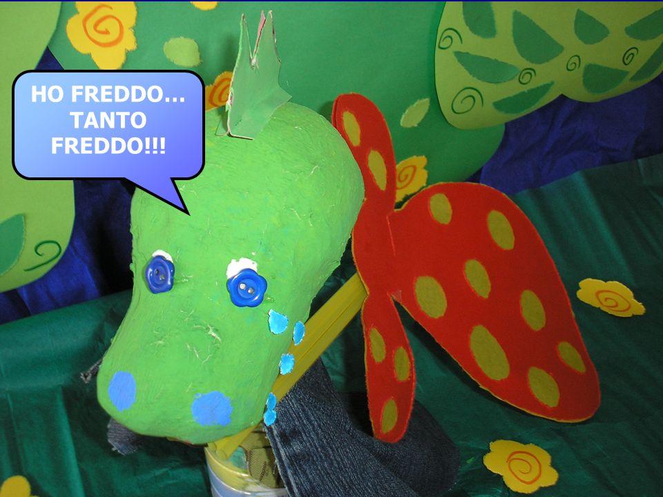 HO FREDDO… TANTO FREDDO!!!