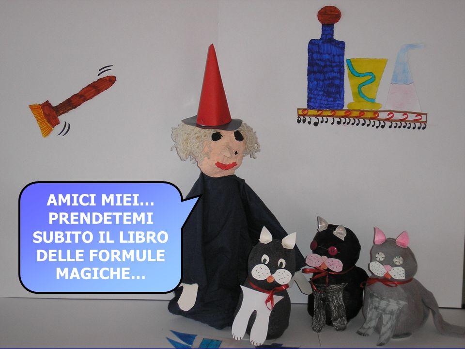 AMICI MIEI… PRENDETEMI SUBITO IL LIBRO DELLE FORMULE MAGICHE…