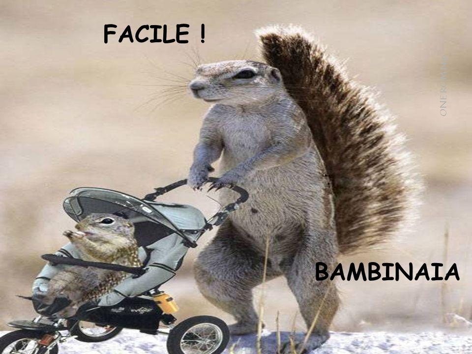 FACILE ! BAMBINAIA ONE ROM Nip